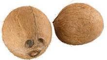 coconut dealers for South America