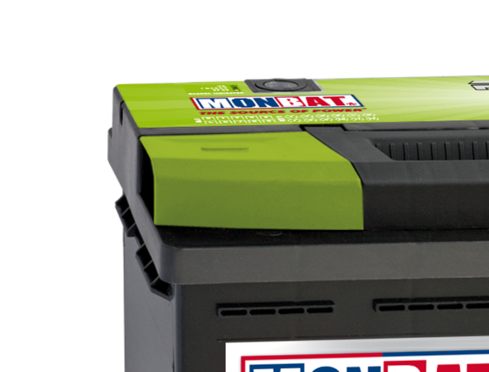 Monbat Car/Truck and Deep Cycle Battery