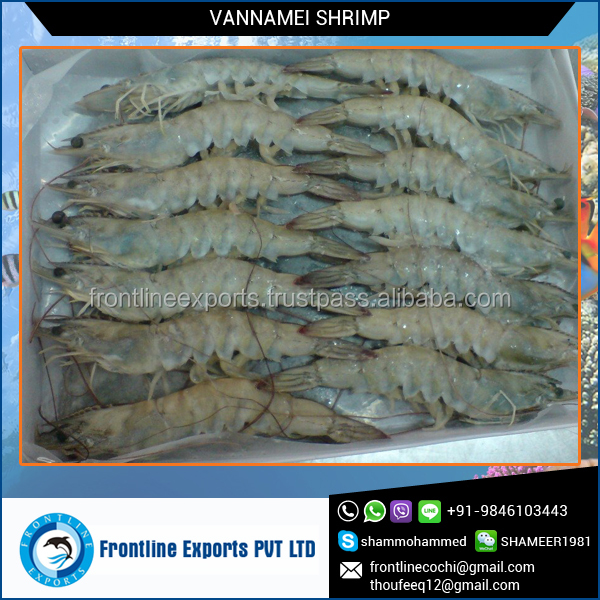 2016 Top Selling Fresh Frozen White Vannamei Shrimp at Lowest Price