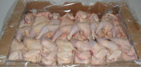 GRADE A HALAL FROZEN CHICKEN FEET