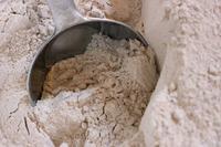 Hard Wheat Grain / Whole Wheat Flour