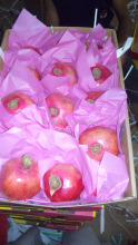 fresh garenda pomegranate from our farm