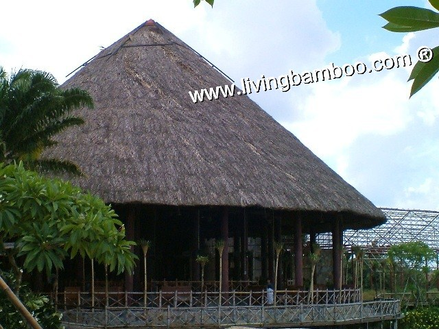 Bamboo house - ROUND BIG PAVILLON