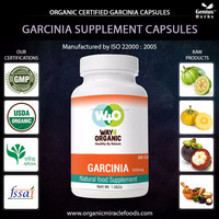 Garcinia Cambogia Extract Slimming Patch Capsules,Tablet
