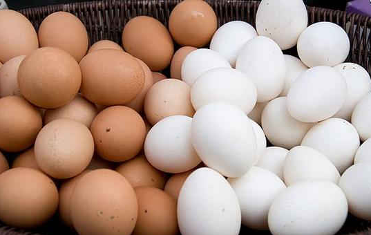 raine Farm Fresh Chicken Table Eggs Brown and White Shell Chicken Eggs