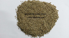Exporters of Cumin Seeds