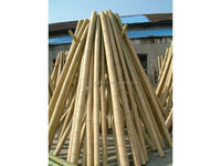 H_Bamboo Pole & Cane from Vietnam Any size very low price