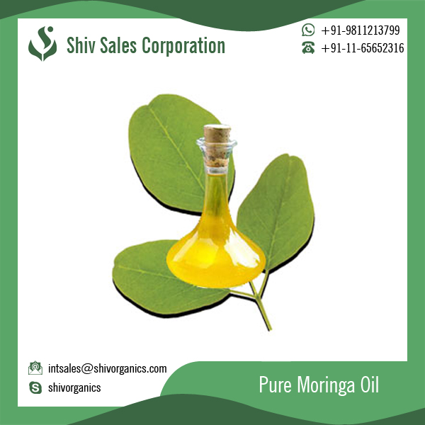 Highly Nutritious Moringa Oil for Massage and Cosmetic Use