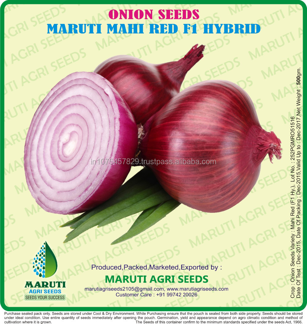 PRICE OF ONION SEEDS N53 DARK RED F1