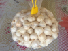 /product-detail/fresh-ly-son-garlic-50027288490.html