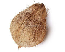 Cheap semi coconuts for sale