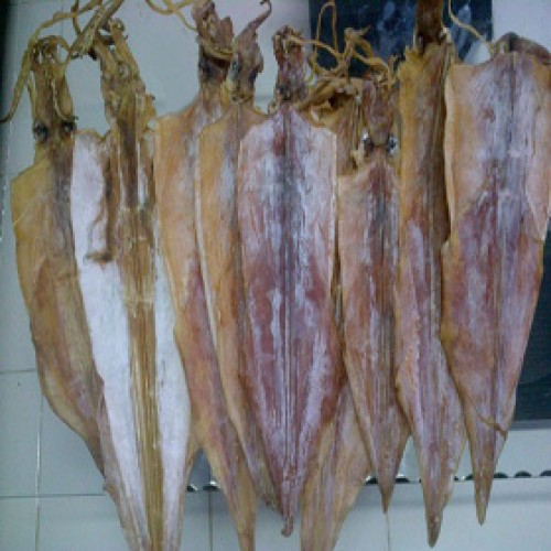 Grade A Dried Squid from Indonesia *price is negotiable (Kunayo.com)