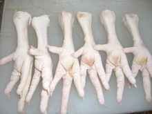 Grade A Processed Frozen Chicken Feet/Paws /Wings for sale