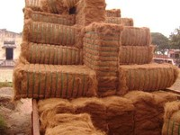Coconut Fiber Coir From Vietnam-DDP