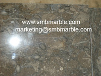 Highly Polished Fossil Brown Natural Stone Slabs at Cheap Rates - Doha, Qatar