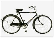 Jet SS Gold 28T Roadster Bicycle