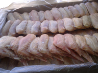 Processed Chicken Feet / Frozen Chicken Paws / Frozen Chicken Wings for sale