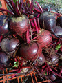 Fresh Beetroot for sale