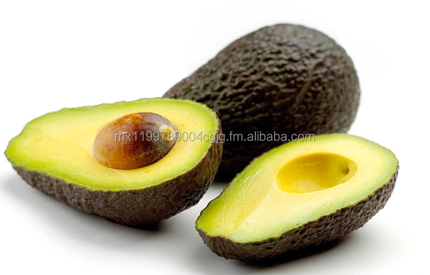 Avocado Hass from Mexico