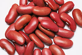 good price Germany factory Organic dark red Kidney Beans