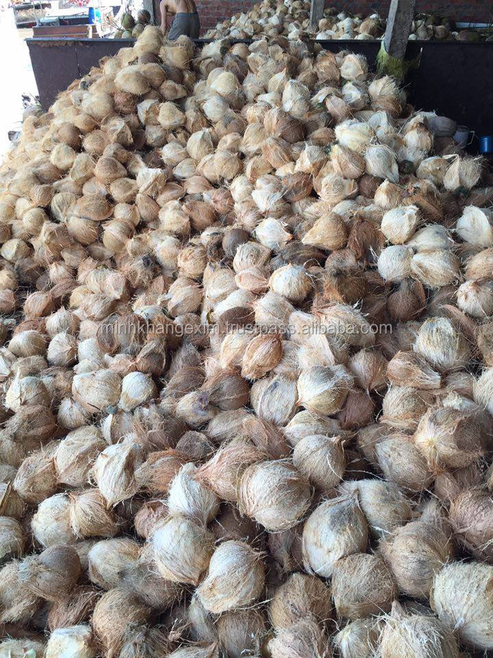 SEMI HUSKED COCONUT /FULL HUSKED COCONUT - SKYPE :TIMUOI88