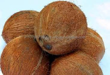 new fresh mature coconuts for Best Sale