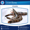 Superior Quality Completely Cleaned Jumbo Frozen Prawns at Best Price