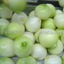 Premium quality PEPPER/Garlics/CLOVES/GINGER/VEGETABLES SPICES ANDHERBS CHEAP PRICE LISTING