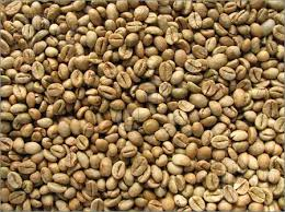 high quality Robusta Coffee beans cheap price