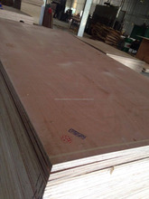 Okoume/Birch/Poplar/Hardwood /Eucalyptus veneer packing plywood in VIET NAM