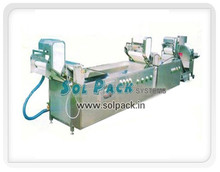 Continuous Vegetable Washing Process