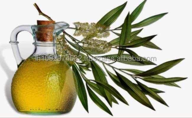 Pure Fragrance Eucalyptus oil