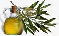 Pure Fragrance Eucalyptus oil