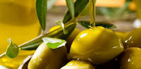 Certified Organic OLIVE OIL for All markets