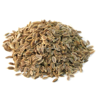 Dill Seeds , Pakistan seeds Exporter