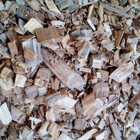 HIGH QUALITY EUCALYPTUS WOODCHIPS