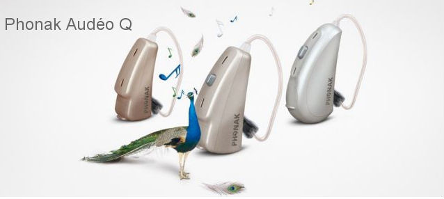 digital programmable hearing aid