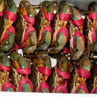 Live Mud Crab (Male, Female, Eggs)