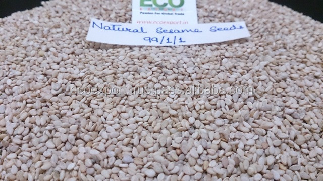 sesame seed for export