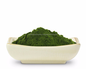 Wheat grass powder producer from india