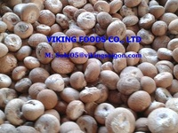 COMPETITIVE PRICE _WHOLE BETEL NUT_FROM VIETNAM