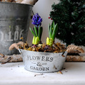galvanized metal garden planter and flower pot