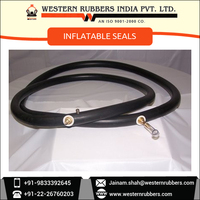 High Resistance FDA Approved EPDM Inflatable Seals