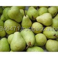 GRADEB A Fresh Sweet pears for new season And Human consumption FOR SALE