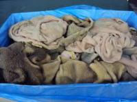 frozen beef Natural Green Tripe for sale