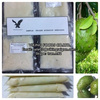 GRAVIOLA/SOURSOP/GUANABANA - BEST PRICE - FROZEN FRUIT