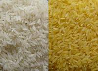 Aromatic and Tasty Brown Rice for Sale at Really Cheap Price