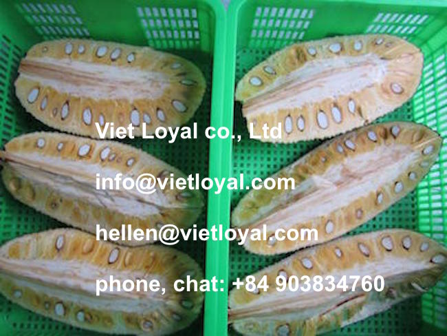 Frozen Jackfruit whole (hotmail: hellen@vietloyal.com)