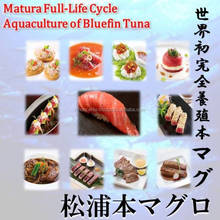 Matsuura bluefin tuna's perfect for luxury Ethnic foods.
