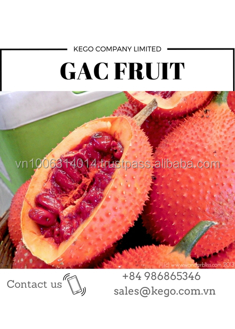 100% pure natural Gac fruit Momordica Cochinchinensis Sement Momordicae extract